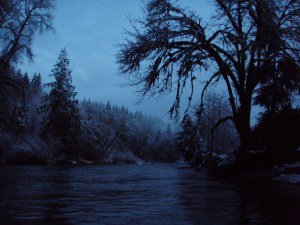 Oregon Winter Steelhead Fishing