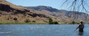 Deschutes River Flyfishing