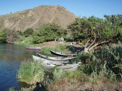 Deschutes River Fly Fishing Report 2012