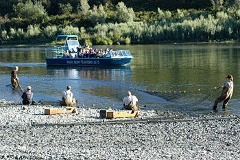 rogue_river_pulling_the_net